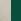 OM - SuperNichel satinato/Verde